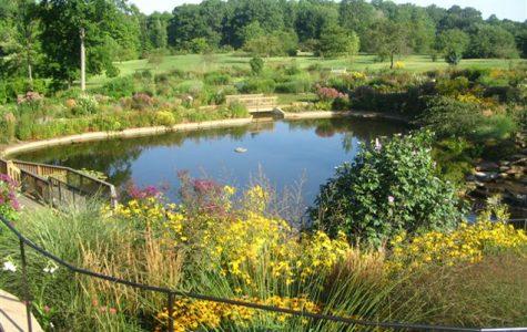 What is the Holden Arboretum?