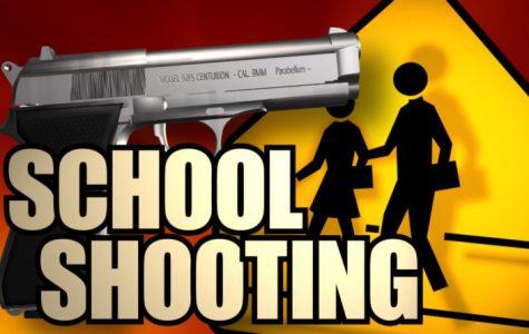 18 School Shootings in 44 Days