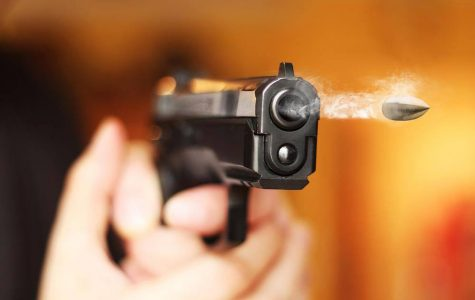 Should the USA have more gun control?