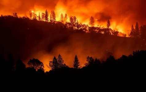 California wild fire the deadliest and most damaging in history