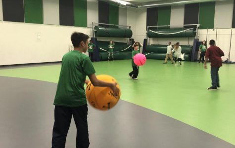 MMS offers two different gym courses for students